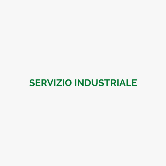 Servizio industriale